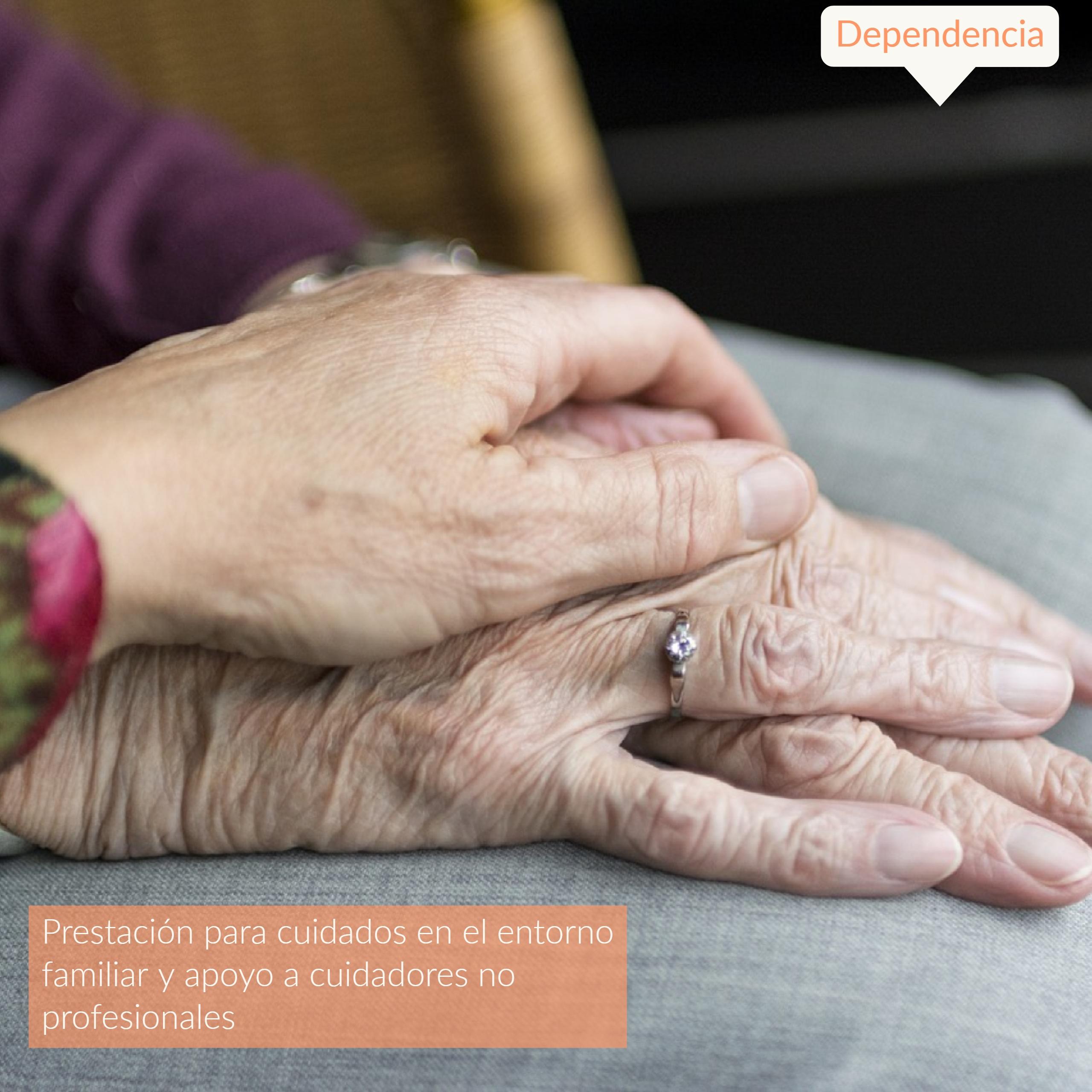 Dependencia – La Conselleria de Igualdad y Políticas Inclusivas se compromete con el Síndic a mejorar la gestión de prestación de cuidados en el entorno familiar