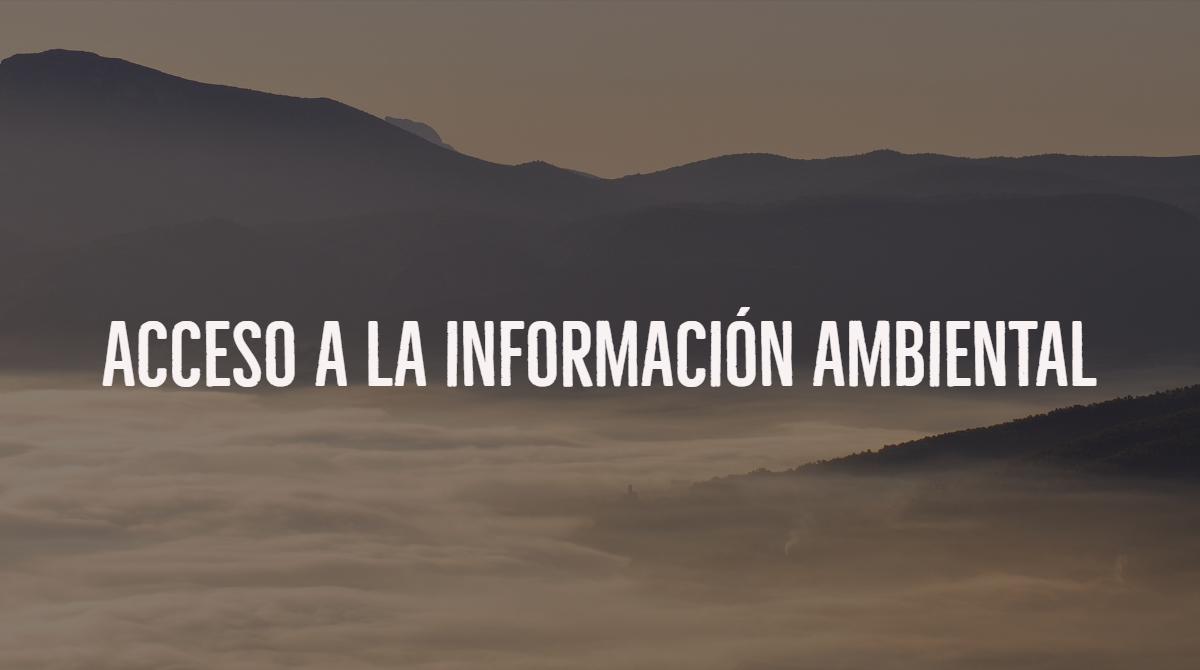 Instamos a que den información ambiental sobre un proyecto desarrollado en la Albufera