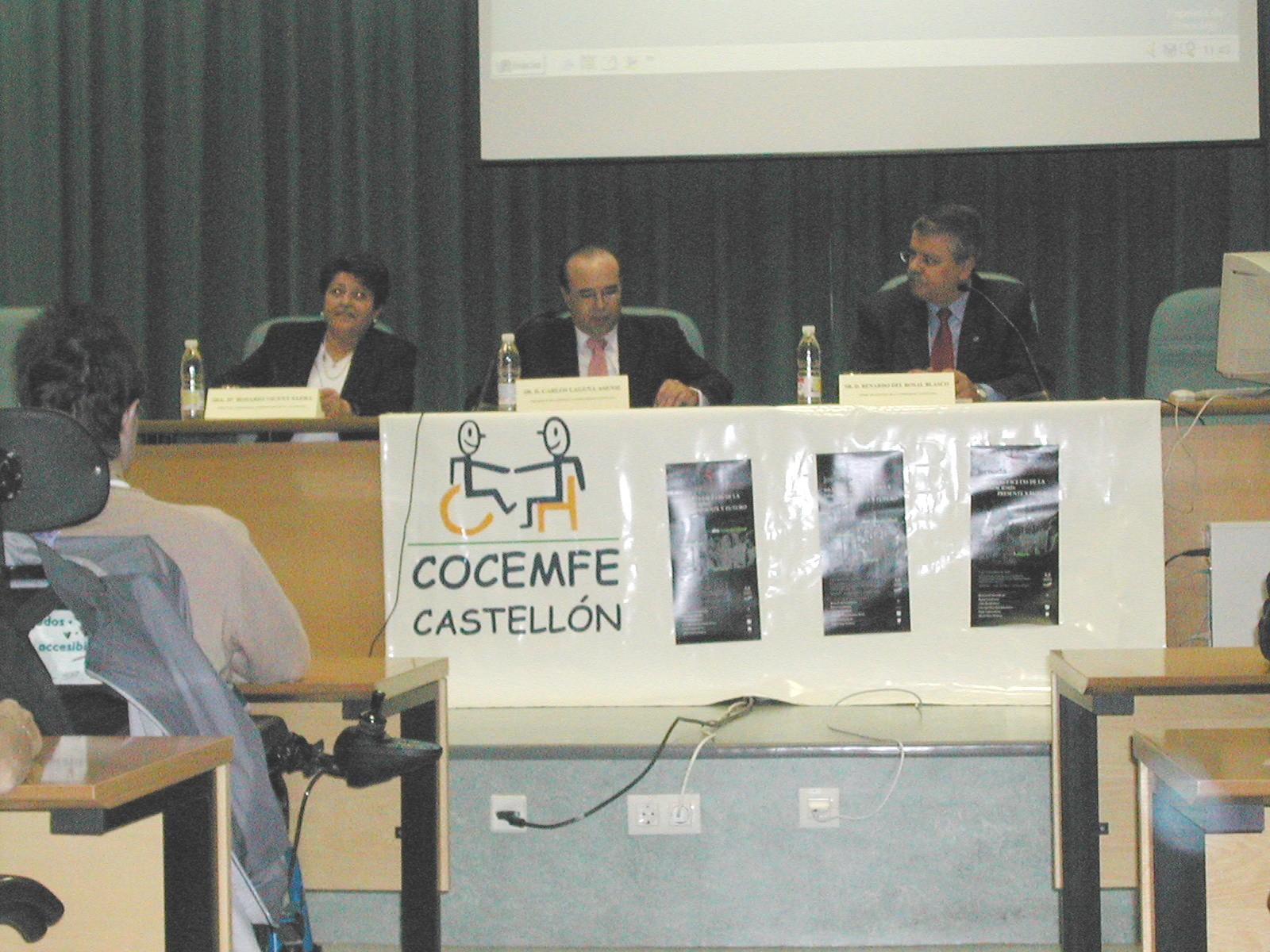 V Jornadas de COCEMFE en Castellón