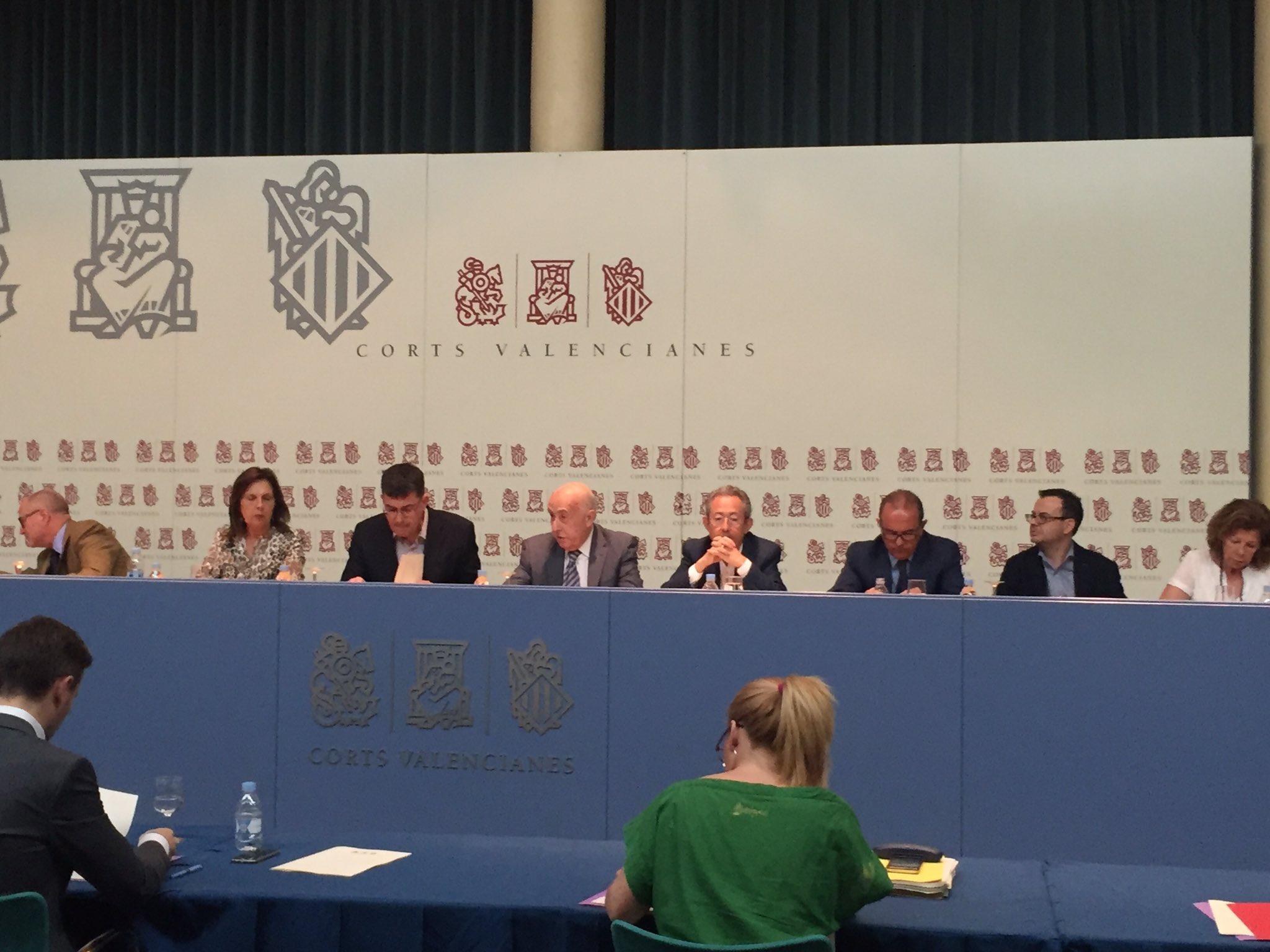 El síndic comparece ante la Comisión de Peticiones de Les Corts para defender el Informe Anual 2015