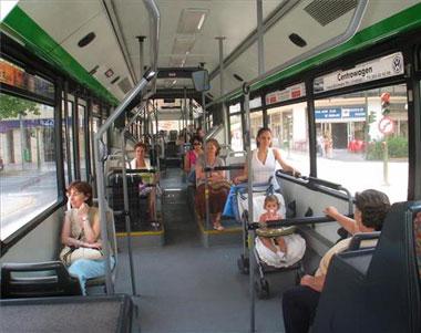 Recomanació perquè el transport públic arribe a una pedania d'Elx
