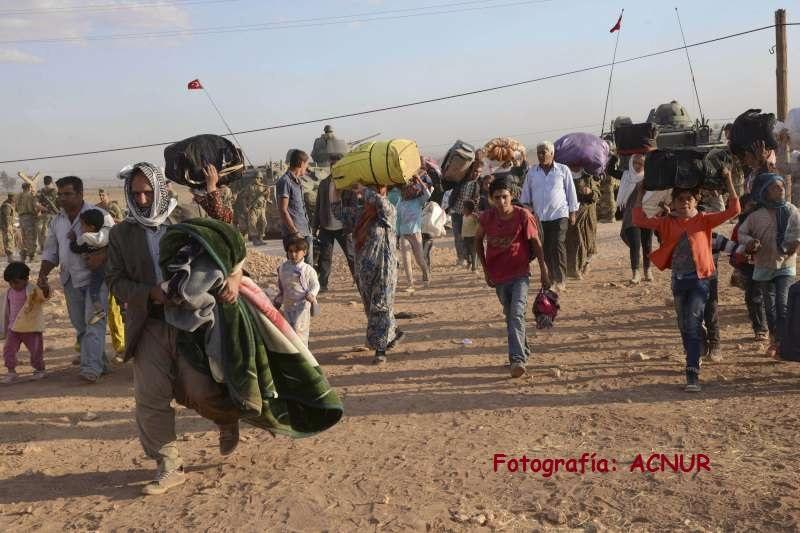 El Síndic urgix a eixir de l'immobilisme en la crisi dels refugiats