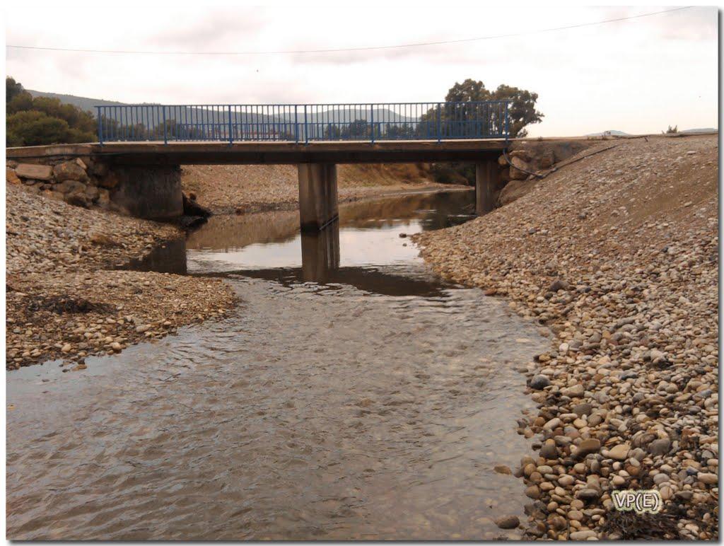 El Síndic insta al Ayuntamiento de Oropesa del Mar a limpiar el cauce del rio Chinchilla