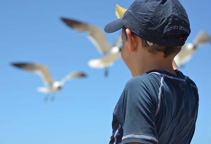 El ejercicio de la tutela de menores por las administraciones públicas valencianas.