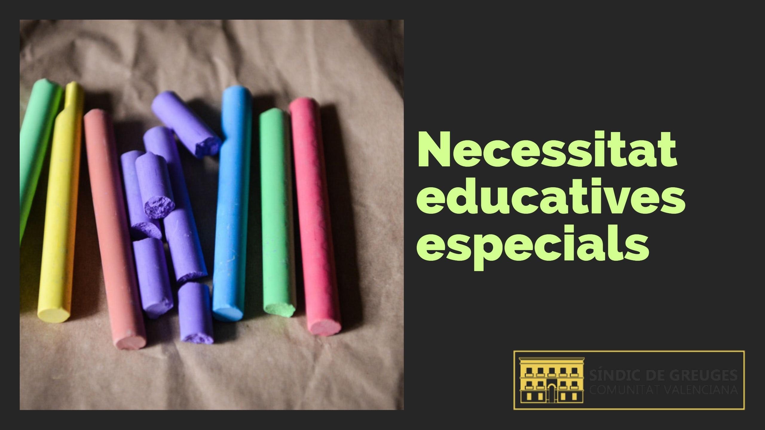 Resolució del Síndic per a la substitució del personal no docent que atén alumnes amb necessitats educatives especials