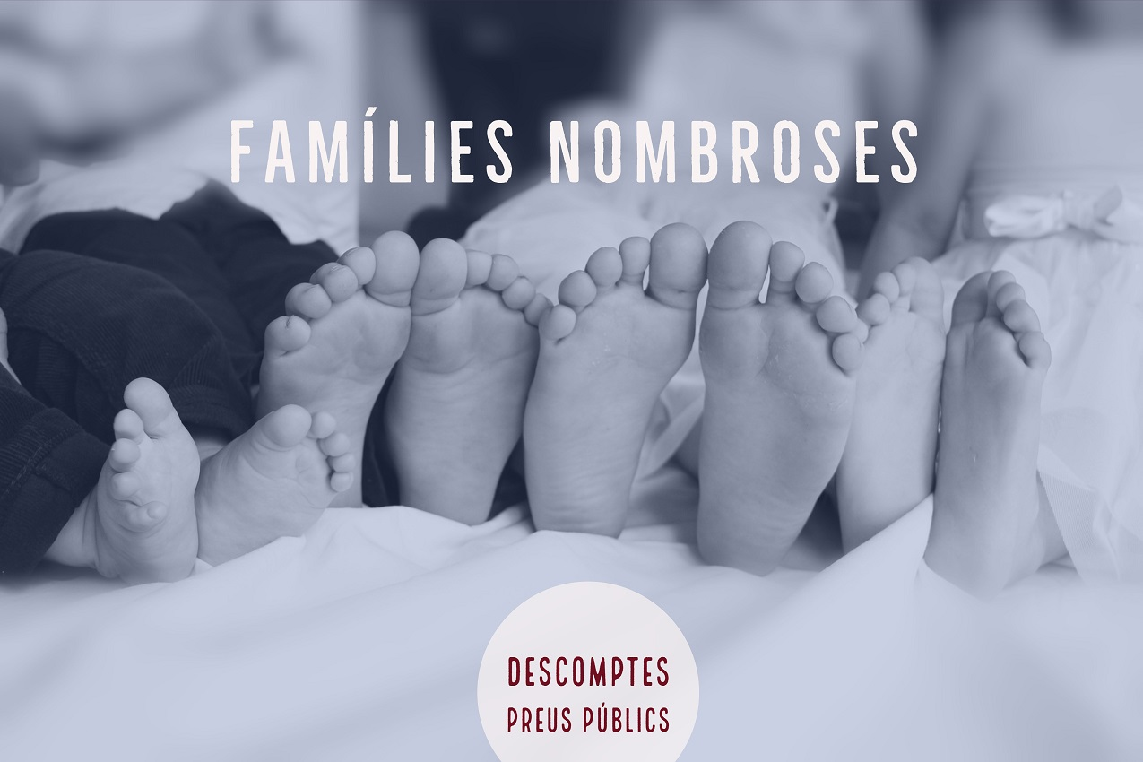 Demanem a l'Ajuntament de València que bonifique les taxes per a famílies nombroses