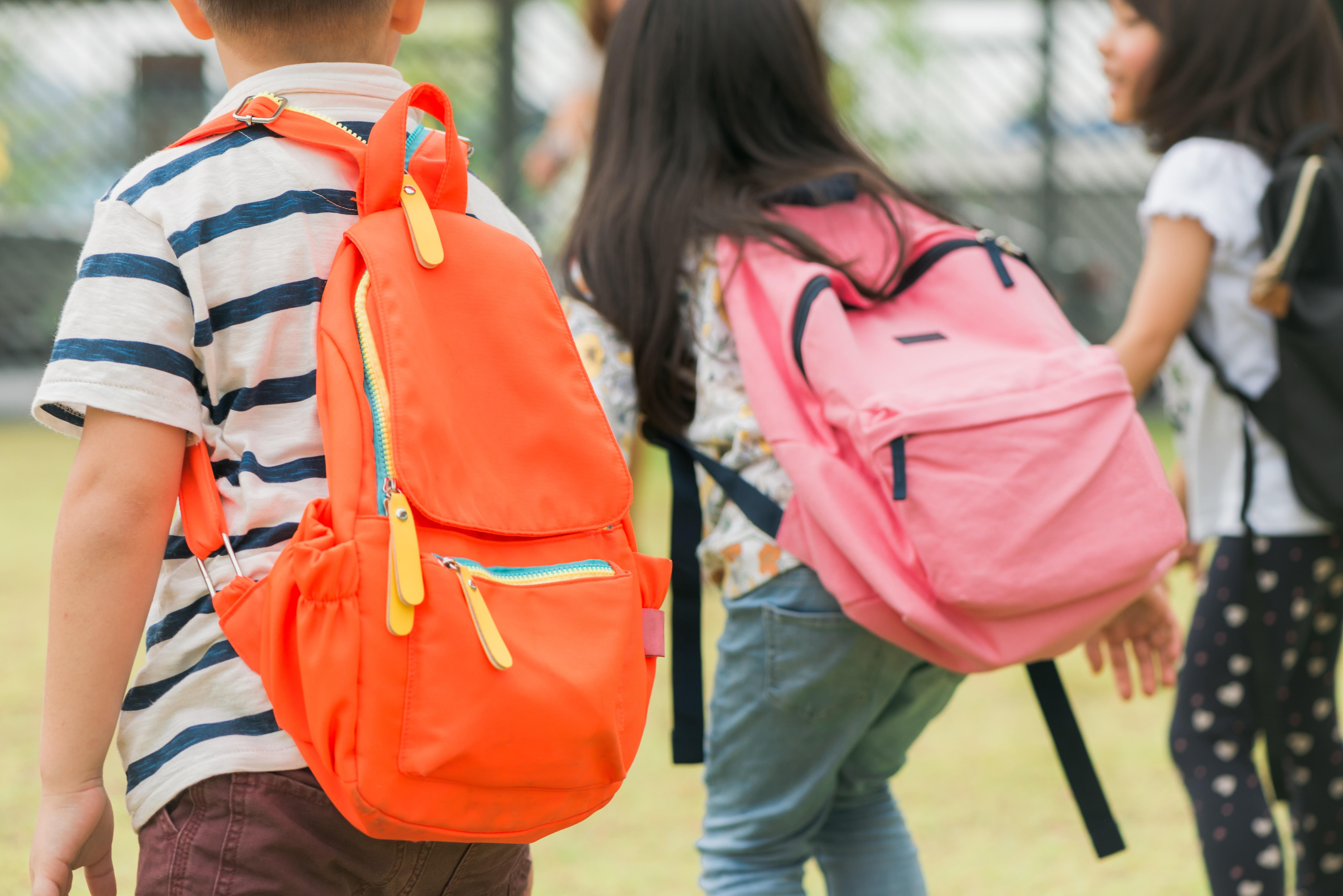 El Síndic abre una queja de oficio por los problemas de acceso al colegio Pedro Duque