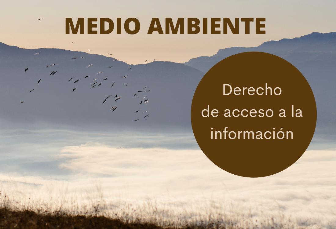 """Instamos a reconocer a Ecologistas en Acción como """"interesado"""" en proyecto de ampliación del vertedero de Xixona y a contestar sus alegaciones"""